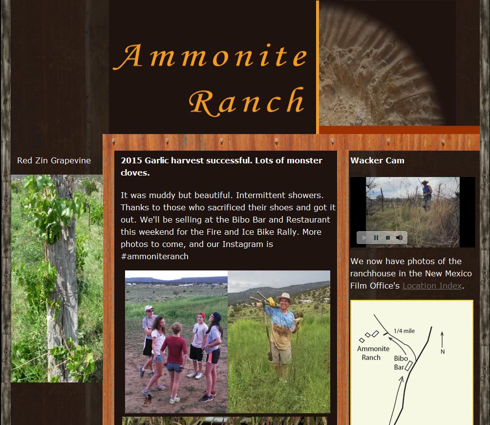 ammoniteranch.com
