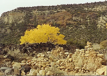 Chupadera Mesa above Bibo